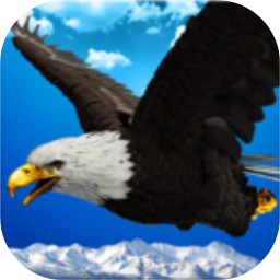 老鹰模拟器(测试版)下载