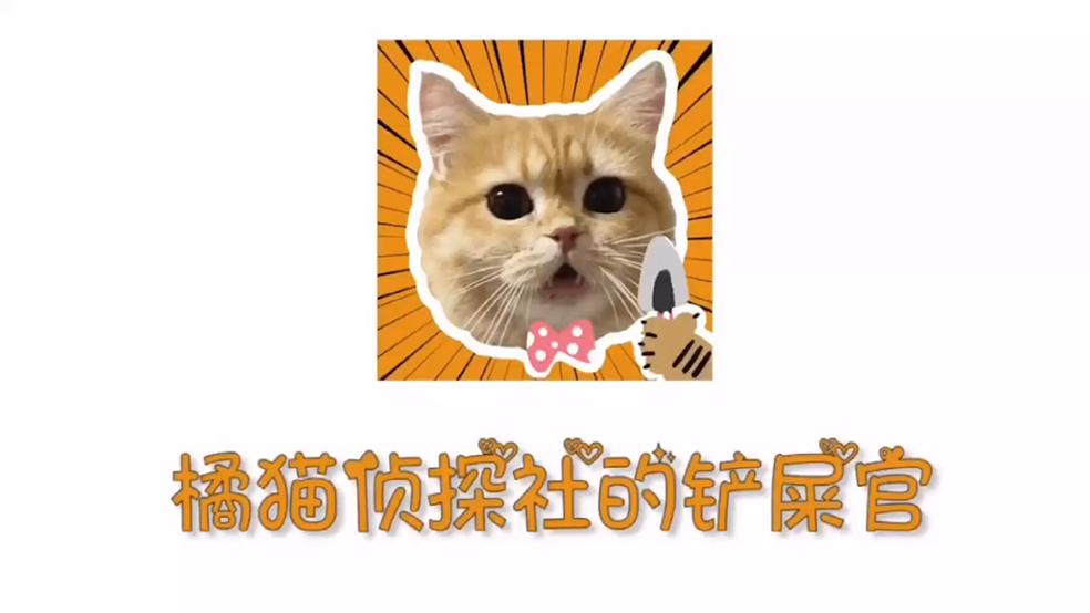 《橘猫侦探社》手游玩法指南,小探员们快来码住吧!