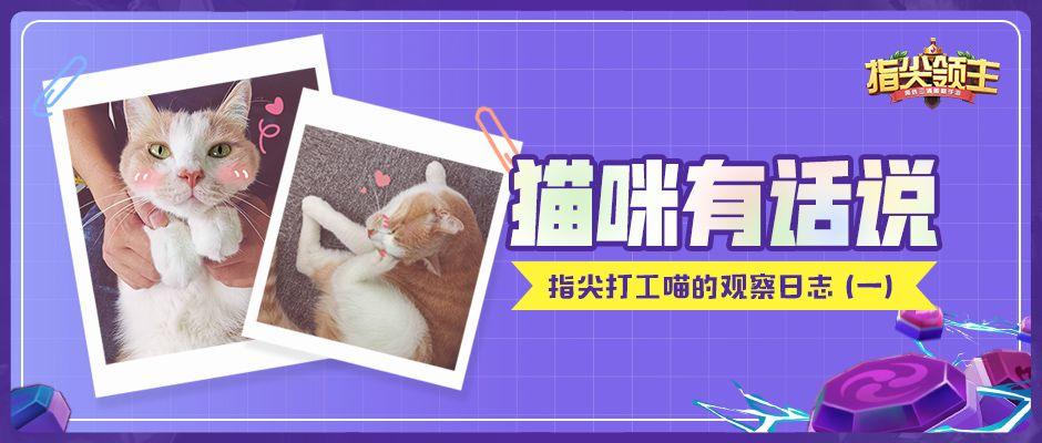 【猫咪有话说】《指尖打工喵的观察日记》(一)